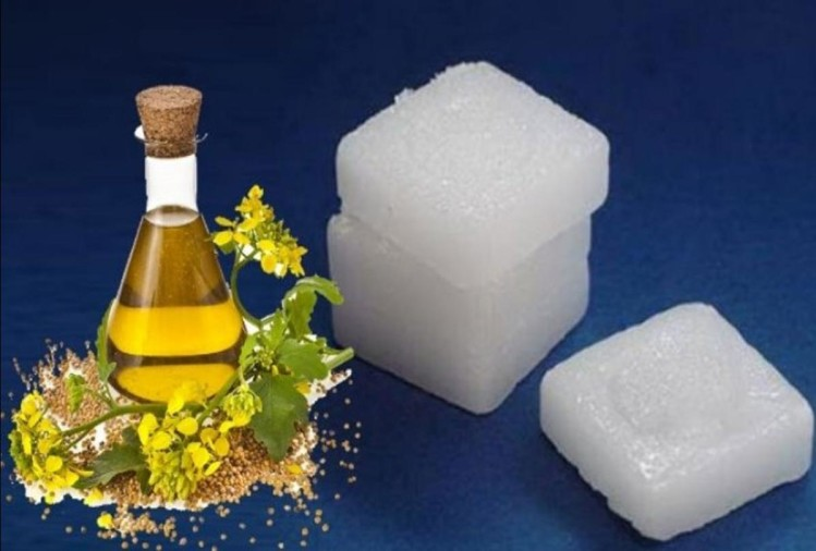 Camphor and Camphor oil
