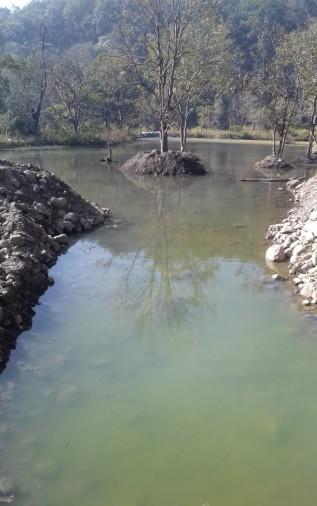 तीन हेक्टेयर के तालाब से प्यास बुझाएंगे वन्यजीव